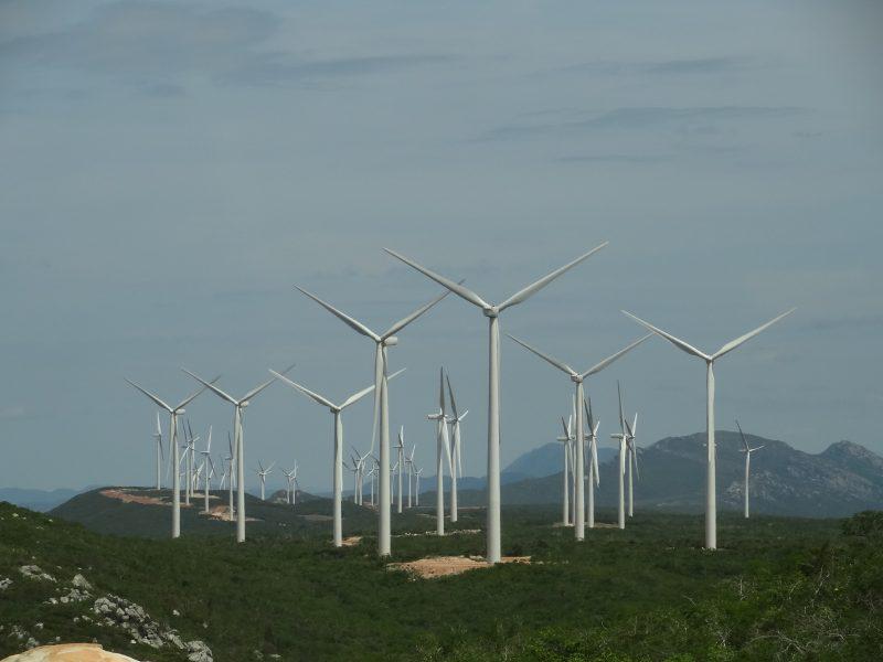 Segue Líder: Bahia Comercializa 55% De Novos Projetos Eólicos Em Leilão De Energia
