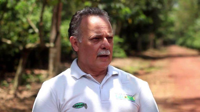 Live Resgata História Do Cacau No Brasil E Sua Expansão Pelo Mundo