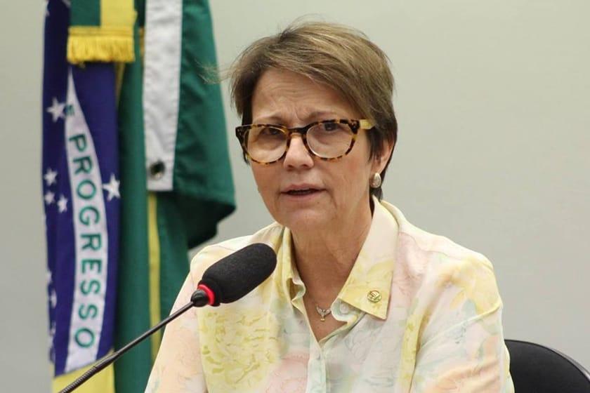 Cacau: Ministra Tereza Cristina Vem Ao Sul Da Bahia, Dia 28, Lançar Modelo De Assistência Técnica Rural