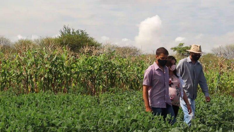 Minidocumentário Retrata Como A Capacitação E Integração Da Ufob Beneficiam O Polo Agroindustrial Do São Francisco