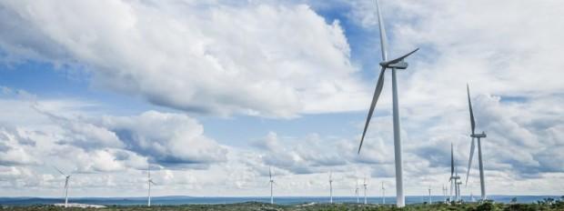 Bahia gerou mais de 30% da energia eólica e solar do país em 2019