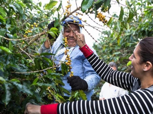 Dia Internacional da Agricultura Familiar é celebrado com conquistas e avanços na Bahia