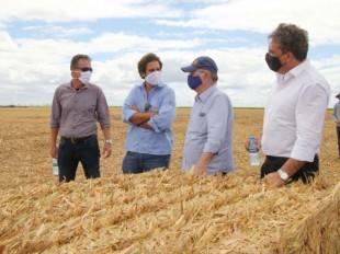 Com 17,7 mil hectares cultivados, Agrovale é inspiração para Polo Agroindustrial do São Francisco