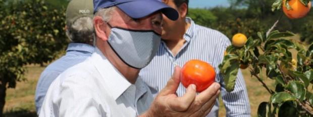 Fazenda Escola Modelo de Barra usará expertise da Univasf e Embrapa em projetos de fruticultura Objetivo é que a escola seja um referencial na formação agrotécnica e agroindustrial